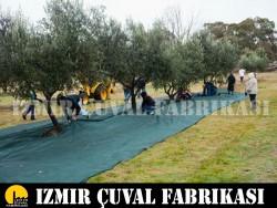 İZMİR ÇUVAL FABRİKASI - ZEYTİN TOPLAMA FİLESİ 1 TOP 6 X 100 MT