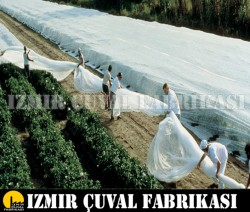 İZMİR ÇUVAL FABRİKASI - Don Kırağı Örtüsü - Agril - 1,60 M x 300 M - 30 gr/m2 sera don örtüsü